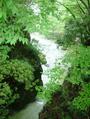 前の写真のサムネイル:滝