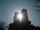 サムネイル:都庁から差す光